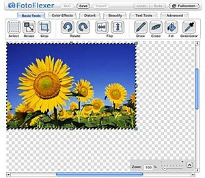 fotoflexer-image-editing