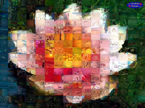 Créer des mosaiques composées d'images