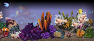 3d-tropical-aquarium-screensaver